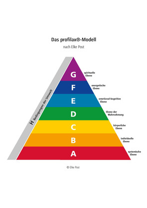 profilax-Modell mit Definitionen